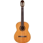 Cordoba C5 LTD Classical - Solid Cedar Top, Flamed Mahogany Back and Sides